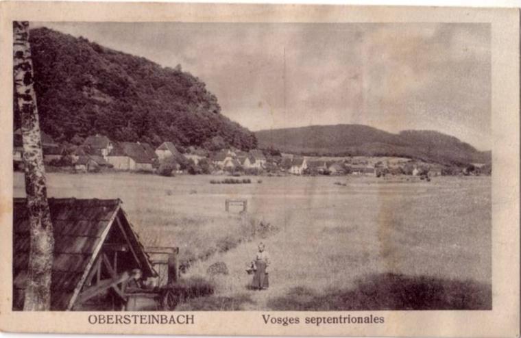 Obersteinbach Vosges septentrionales Farmer lady